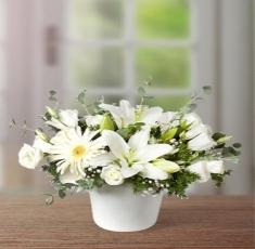 çerkezköy çiçekçi