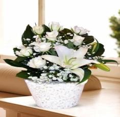 çerkezköy çiçekçilik